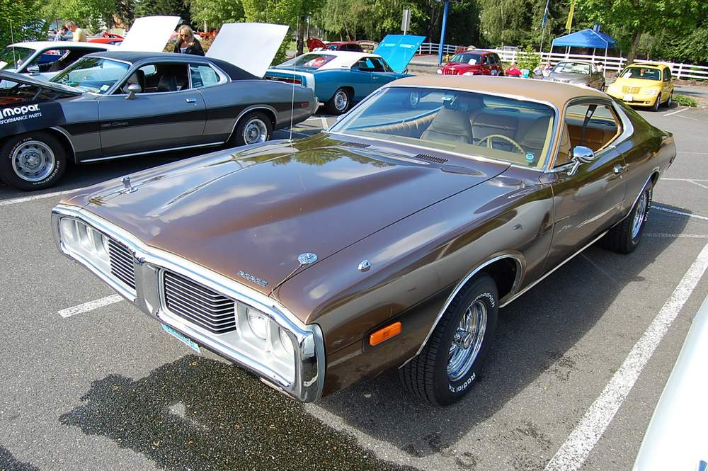 brown-Dodge-Charger