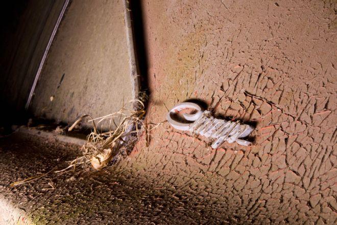 1969-Dodge-Daytona-emblem